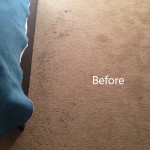 Bedroom-Carpet-Cleaning-Mountain-View-A
