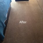 Bedroom-Carpet-Cleaning-Mountain-View-B