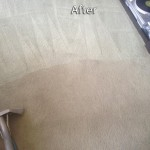 Mountain-View-Carpet-Cleaning-Company