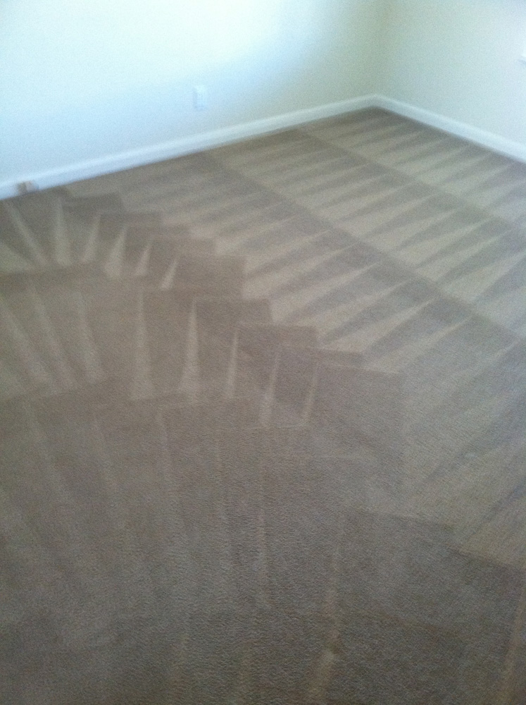 Carpet Cleaning Mountain View Ca Carpet Cleaning Carpet Cleaning Mountain View