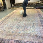 Mountain-View-Professional-Rug-Cleaning