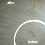 Mountain-View-Wine-Stain-Carpet-Cleaning