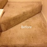 Stairs-Carpet-Cleaning-Mountain-View-A